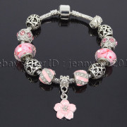 Big-Hole-Crystal-Charm-Beads-Fit-European-Charms-Bracelet-Jewerly-Chain-Silver-282113699406-f775