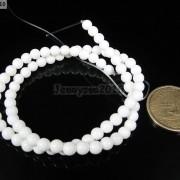 Natural-Gemstone-White-Tridacna-Round-Beads-16039039-4mm-6mm-8mm-10m-12mm-14mm-16mm-281208079261-f22d