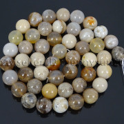 Natural-Oceam-Fossil-Coral-Agate-Gemstone-Round-Beads-155039039-Strand-4mm-6mm-8mm-282292446464-4df7