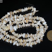 Natural-White-Mother-Of-Pearl-5-8mm-Chip-Beads-35-Bracelet-or-Necklace-Making-281152433163-2